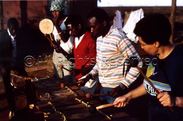 Terry Quaye playing balafon, African xylophone, outdoors with other musicians in Zimbabwe.